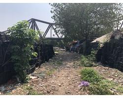 Biến rác nhựa thành hàng rào, bãi rác thành vườn rau