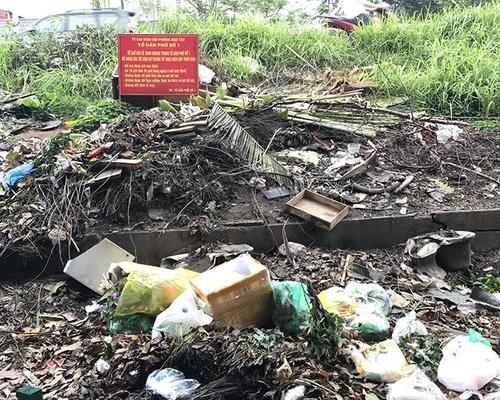 Vô tư đổ rác nơi biển cấm