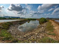 Ô nhiễm rác thải nhựa ở Bà Rịa - Vũng Tàu