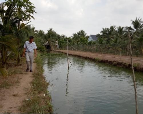 Nguồn nước tưới từ PVC ,những tác động tích cực đến hệ sinh thái